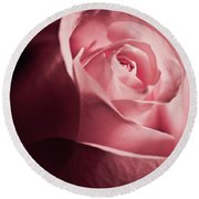 Round Beach Towel featuring the photograph Lovely Pink Rose by Micah May
