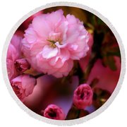 Lovely Spring Pink Cherry Blossoms Round Beach Towel