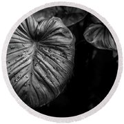 Low Key Nature Background, Textured Plants, Leaves For Decorativ Round Beach Towel