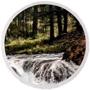 Lucia Falls In July Round Beach Towel