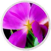 Luminous Tulips Round Beach Towel