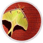 Luna Moth On Red Barn Round Beach Towel