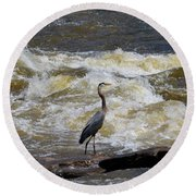 Lunch In The James River 1 Round Beach Towel
