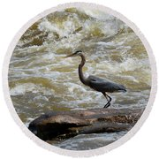 Lunch In The James River 3 Round Beach Towel