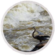 Lunch In The James River 4 Round Beach Towel