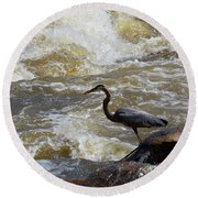 Lunch In The James River 5 Round Beach Towel