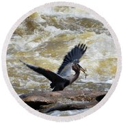 Lunch In The James River 7 Round Beach Towel