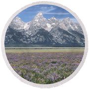 Lupine And Grand Tetons Round Beach Towel