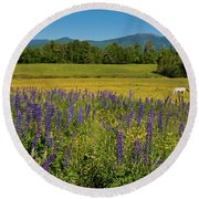Round Beach Towel featuring the photograph Lupine Festival by Brenda Jacobs