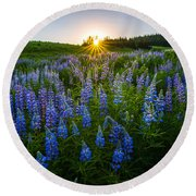 Lupine Meadow Round Beach Towel by Dustin  LeFevre
