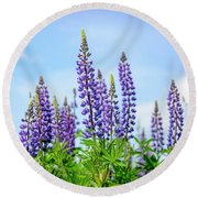 Lupines And Blue Sky Round Beach Towel