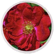 Round Beach Towel featuring the mixed media Luscious Red With Effects by Lynda Lehmann
