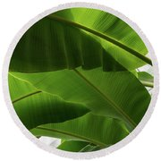 Luscious Tropical Greens - Huge Leaves Patterns - Horizontal View Downwards Left Round Beach Towel