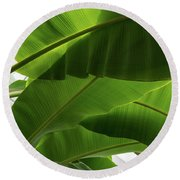Luscious Tropical Greens - Huge Leaves Patterns - Horizontal View Downwards Right Round Beach Towel