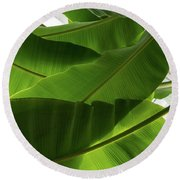 Luscious Tropical Greens - Huge Leaves Patterns - Horizontal View Upwards Left Round Beach Towel