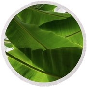 Luscious Tropical Greens - Huge Leaves Patterns - Horizontal View Upwards Right Round Beach Towel