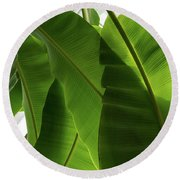 Luscious Tropical Greens - Huge Leaves Patterns - Vertical View Downward Right Round Beach Towel