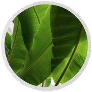 Luscious Tropical Greens - Huge Leaves Patterns - Vertical View Upwards Right Round Beach Towel