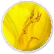 Luscious Yellow Round Beach Towel