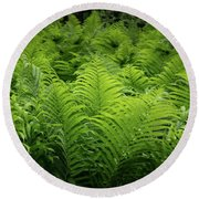 Luxuriant Ferns In More Than Fifty Shades Of Green Round Beach Towel