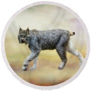 Lynx Round Beach Towel by Suzanne Handel