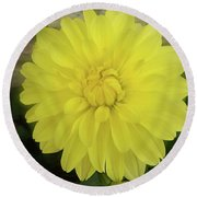 M Shades Of Yellow Flowers Collection No. Y90 Round Beach Towel