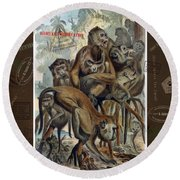 Round Beach Towel featuring the digital art Macaques For Responsible Travel by Nola Lee Kelsey