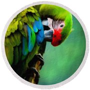 Macaw Green Feather Preen Round Beach Towel
