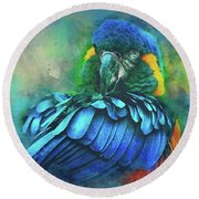 Macaw Magic Round Beach Towel by Brian Tarr
