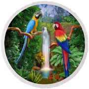 Macaw Tropical Parrots Round Beach Towel