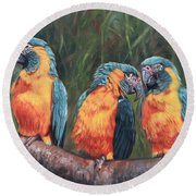 Round Beach Towel featuring the painting Macaws by David Stribbling