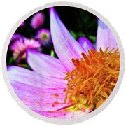 Macro Round Beach Towel by Cesar Vieira