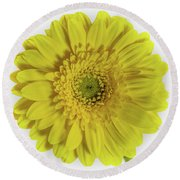 Macro Flower Round Beach Towel