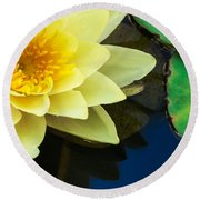 Macro Image Of Yellow Water Lilly Round Beach Towel