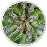 Round Beach Towel featuring the photograph Macro Of A Weed by Jean Haynes