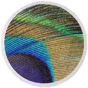 Macro Peacock Feather Round Beach Towel