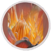 Macro Water Lily Round Beach Towel