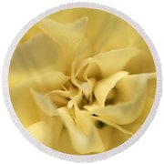 Macro Yellow Rose Round Beach Towel