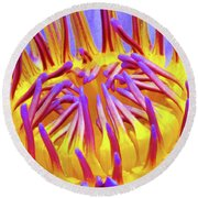 Macro's Lotus Round Beach Towel