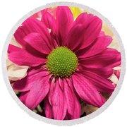 Magenta Chrysanthemum Round Beach Towel