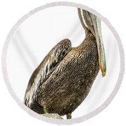 Majestic Gulf Shores Pelican 1071a Round Beach Towel