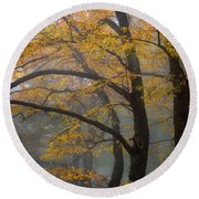 Magical Forest Blue Ridge Parkway Round Beach Towel