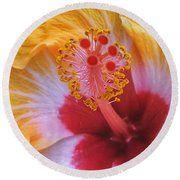 Magical Hibiscus  Round Beach Towel