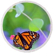 Round Beach Towel featuring the photograph Magical Monarch by Byron Varvarigos