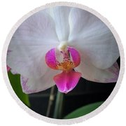 Magical Orchid Round Beach Towel