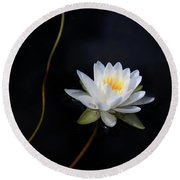 Magical Water Lily Round Beach Towel
