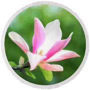 Magnificent Daybreak Magnolia At Day's End Round Beach Towel