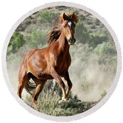 Magnificent Mustang Wildness Round Beach Towel