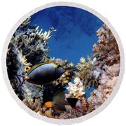 Magnificent Red Sea World Round Beach Towel