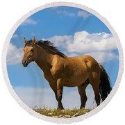 Magnificent Wild Horse Round Beach Towel